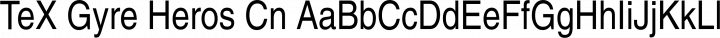 TeX Gyre Heros Cn Regular free font