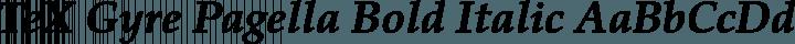 TeX Gyre Pagella Bold Italic free font