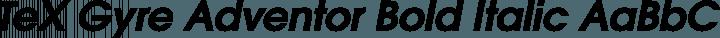TeX Gyre Adventor Bold Italic free font