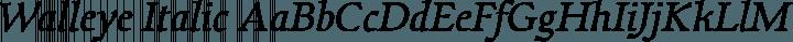 Walleye Italic free font