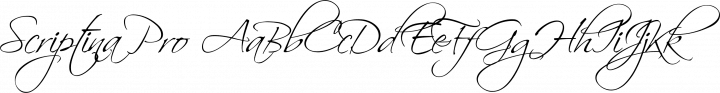 Scriptina Pro Regular free font