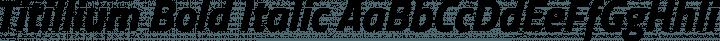 Titillium Bold Italic free font